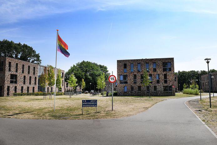 De regenboogvlag wappert op het midden van het azc-terrein in Grave.
