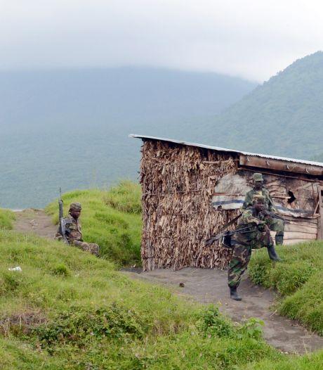 RDC: affrontements entre l'armée et rebelles du M23 au nord de Goma
