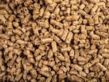 'Biomassacentrale Arnhem is nog te stoppen, ook door politiek'