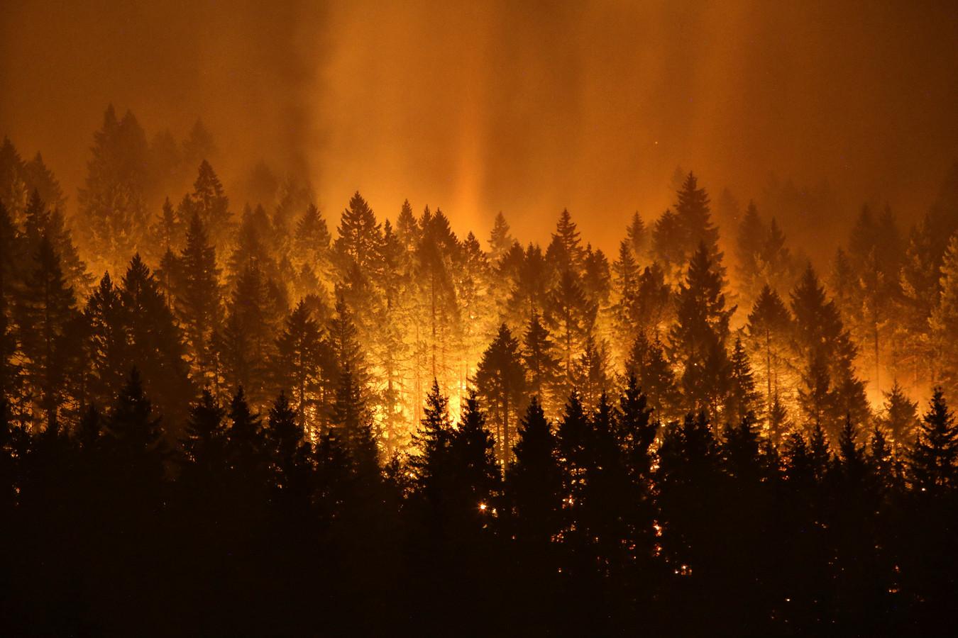 De bosbranden bij Oregon.