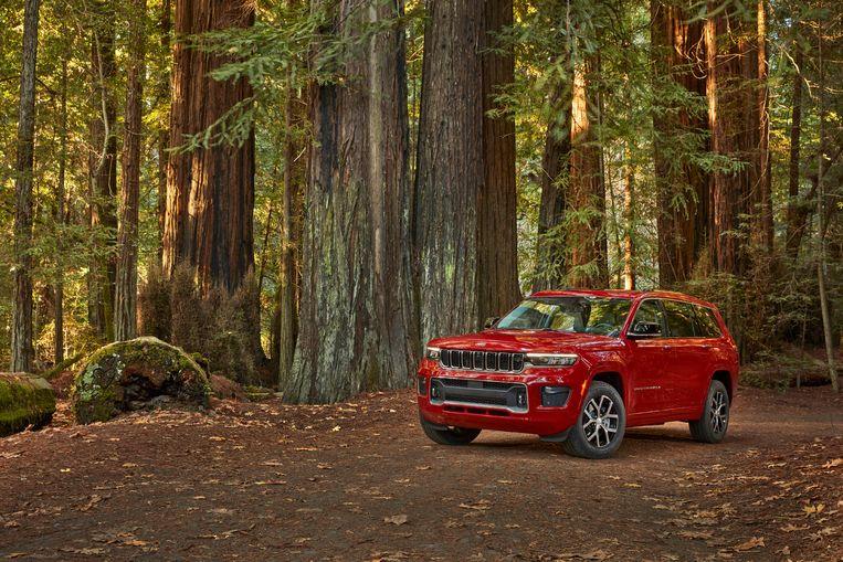 De Jeep Grand Cherokee heeft zijn naam wel gestolen, vinden de Cherokee. Beeld AP