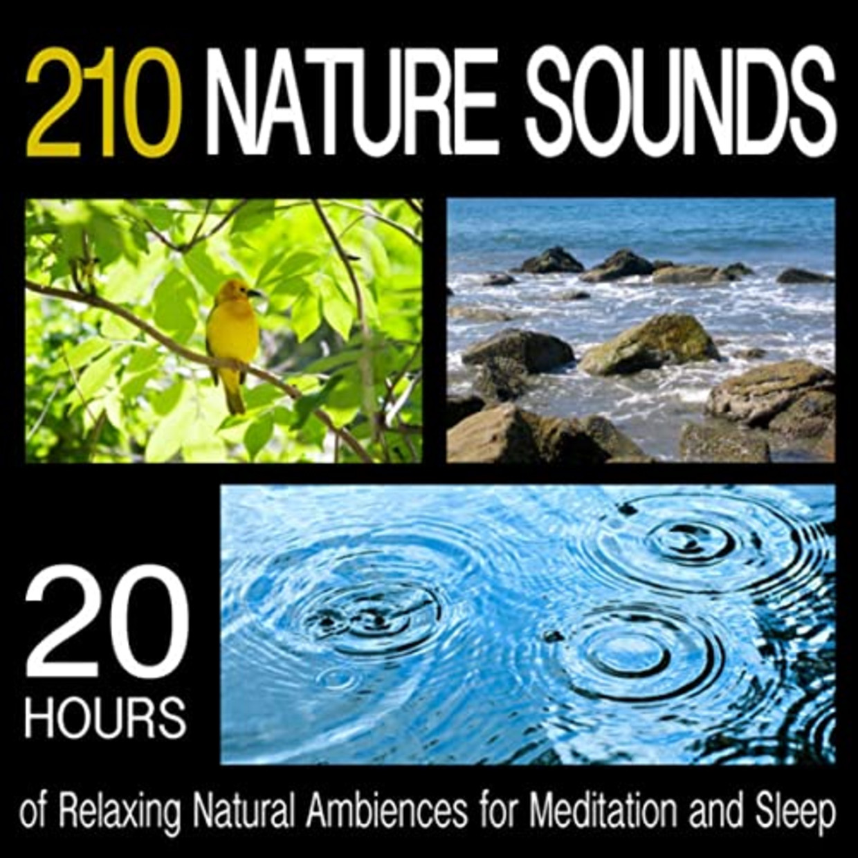 '210 Nature Sounds' (2011) van Pro Sound Effects Library. Beeld rv