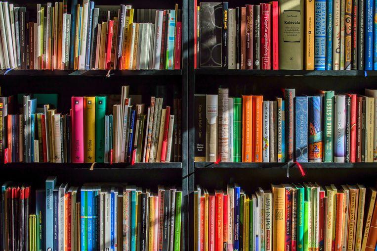Boeken bibliotheek boekenkast lezen bib library books