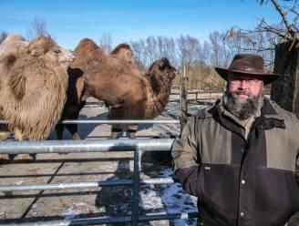 """Succesvolle heropening voor De Zonnegloed: """"Blij dat we weer nieuwe dieren kunnen redden"""""""