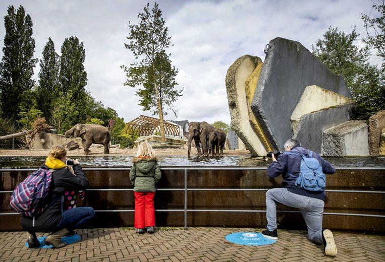 Dierentuin Artis krijgt 15 miljoen euro om het Aquariumgebouw uit 1881 te restaureren. Beeld ANP