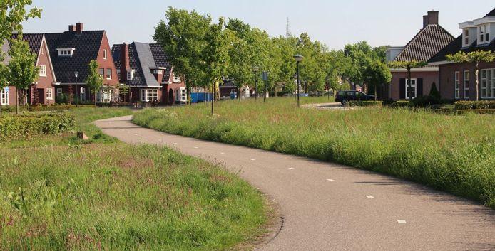 De bermen op Karrevracht in Uden, voordat de gemeente er minder ging maaien.