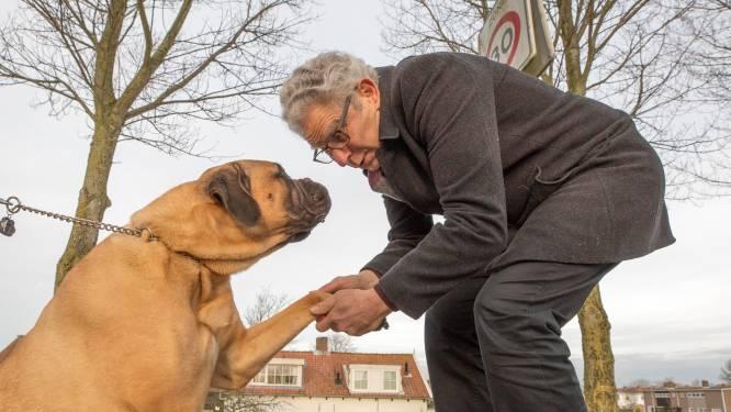 Strijd tegen hondenbelasting haalt niets uit: 'Kabinet heeft er schijt aan'