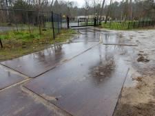 Rechter tegen Jan de Rooy: 'Hek moet weg', maar ook Oirschot en natuurwerkgroep moeten water bij de wijn doen