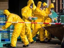 Ophokplicht voor pluimvee in heel Nederland na vogelgriepuitbraak in Zeewolde