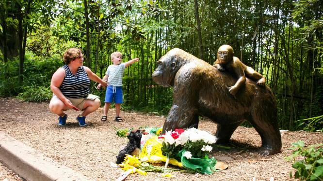 Doodgeschoten aap Harambe kan nog vader worden