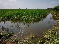 Provincie: 'Verklaar ook Brabant tot rampgebied'