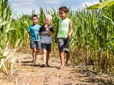 Maisdoolhof in Malden gaat flink verbouwen
