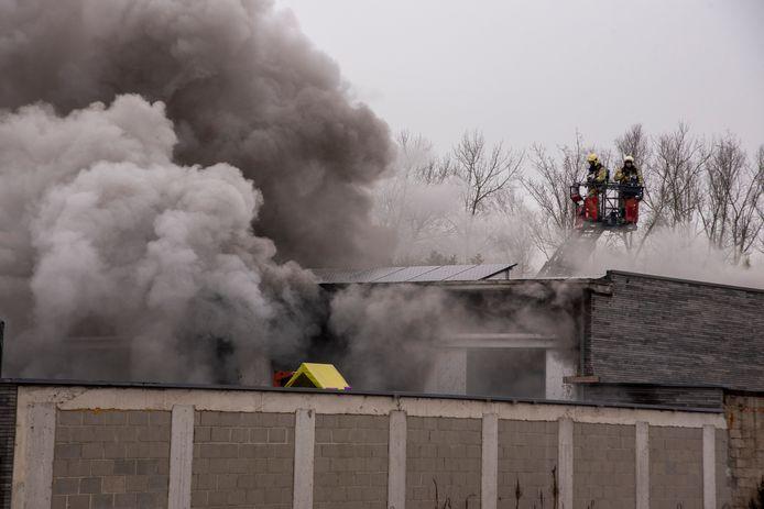Bij een brand in een loods op Moleken werden negen wagens vernield.