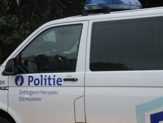Politie op koeienjacht langs spoorlijn L89