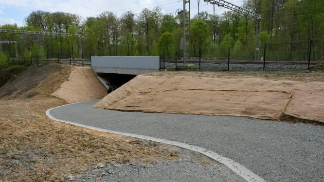 Nieuwe onderdoorgang onder de sporen van de lijn Brussel-Ottignies-Namen in Zoniënwoud ingehuldigd
