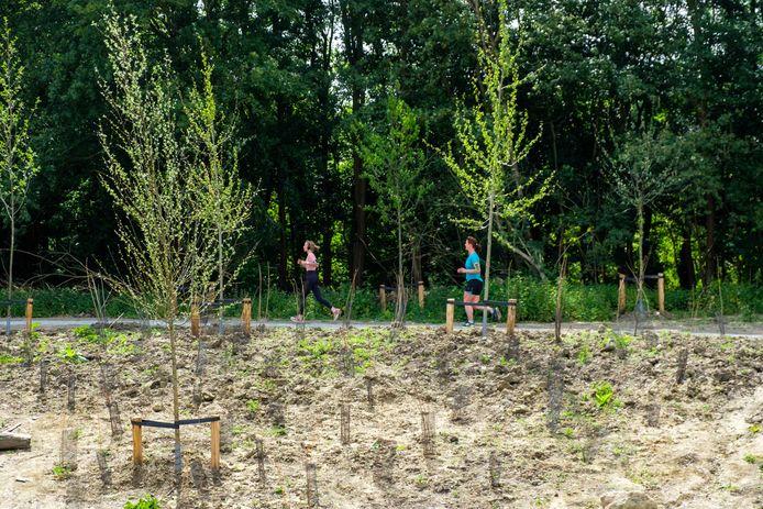 De Antwerpenaar wil meer groen: Park Brialmont naast de Singel in Antwerpen.