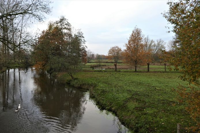 Het nieuwe stuk natuur dat Dommelbimd heeft aangekocht.