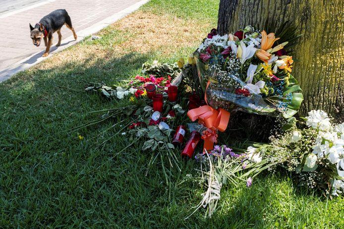 Bloemen op de plek waar het slachtoffer doodgeschopt werd.