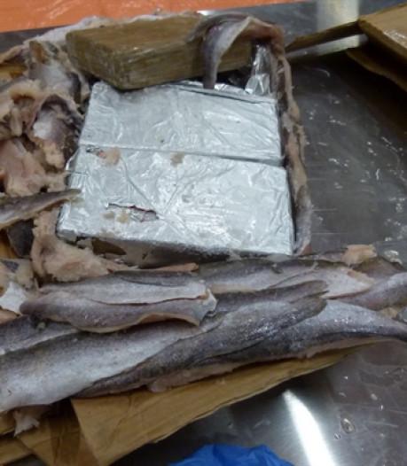 Grote cocaïnevangst tussen bevroren vis, Tielenaar opgepakt