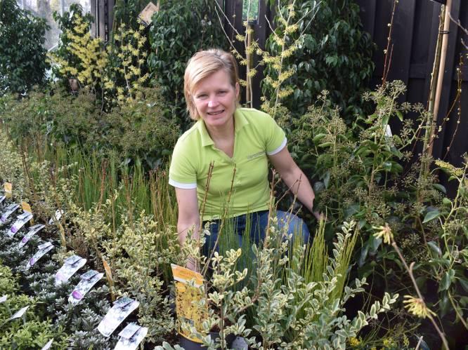 """Eerste lentezon lokt mensen naar de tuincentra: """"Zalig om nu al met de handen in de grond te kunnen wroeten"""""""