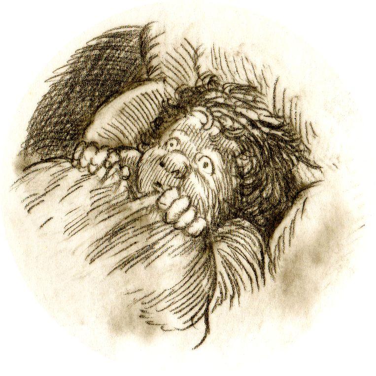 Het gruwelijke kwam tot mij via 'Der Struwwelpeter'. Suppen-Kaspar was een jongen die weigerde soep te eten en daaraan doodging. Beeld Typex