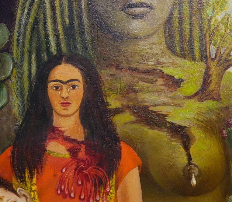 Frida Kahlo, Liefdesomhelzing van het universum, de aarde (Mexico), Diego, ikzelf en de heer Xólotl, 1949, olieverf op masoniet Beeld Gelman Collction/Vergel Foundation