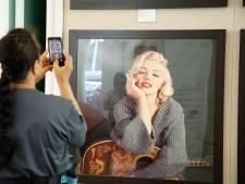 Pluk haar Marilyn Monroe onder de hamer