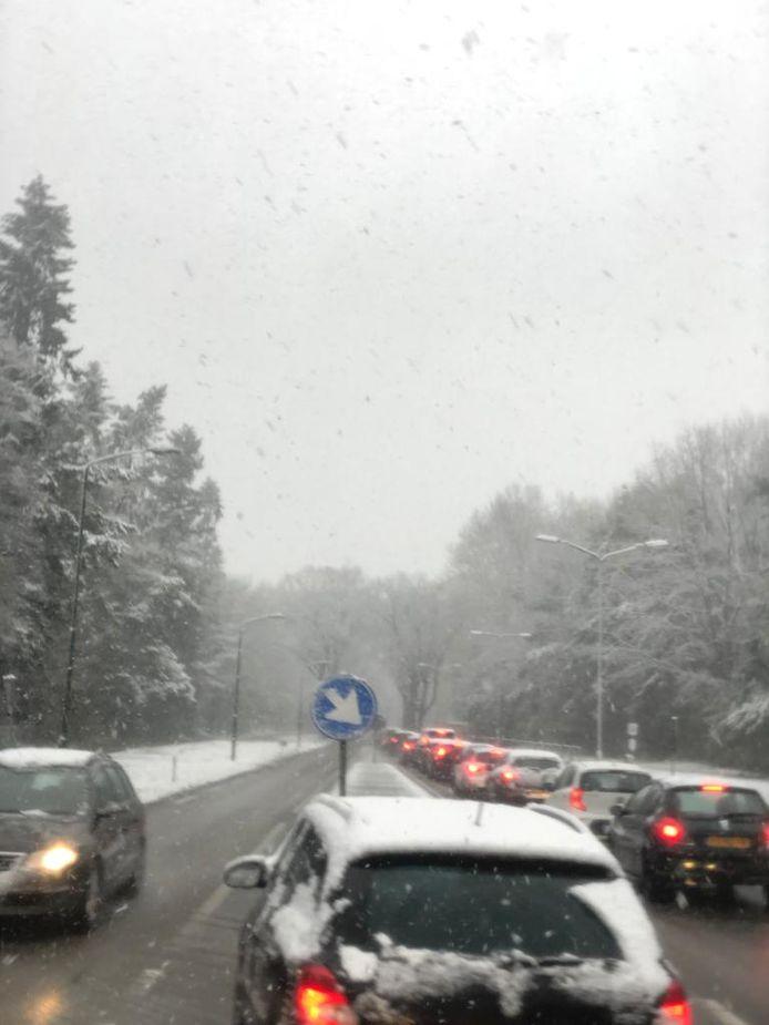 Files door sneeuw