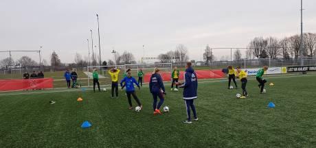 Gemeente wil wel kunstgras, maar geen extra kleedkamers bij Bossche voetbalclubs