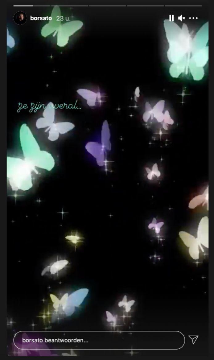 De vlindertjes van Marco en Leontine