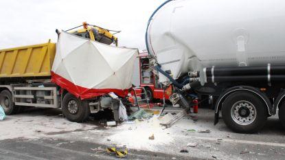 29-jarige truckchauffeur overleeft kop-staartaanrijding niet