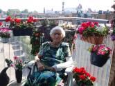Mevrouw Hoekveen (95) is dol op geraniums: 'Maar niet om alleen achter te zitten'