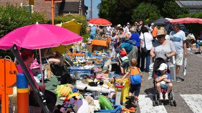 Opnieuw duizenden bezoekers verwacht op 'Brocante op den Dries'