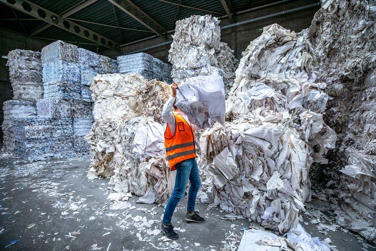 Bedrijven die karton en papier recyclen, zoals Stoelman in Haarlem, boeren goed door het papiertekort.  Beeld Raymond Rutting / de Volkskrant