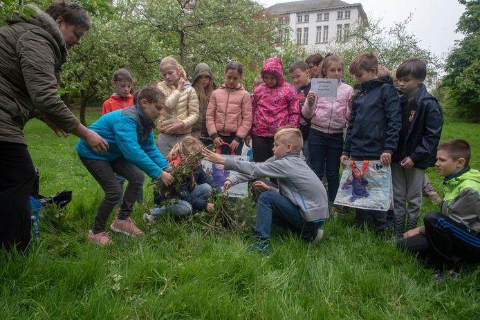 Leerlingen van het 4de leerjaar Sint Jozef bouwen een egelburcht in de tuin van het klooster.
