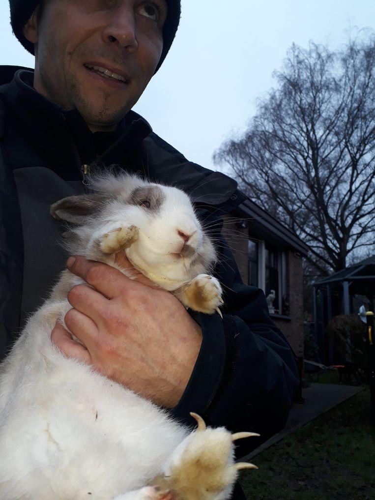Zaterdag werd een verwaarloosd konijn binnengebracht in het VOC.