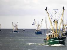 Vissers hijsen piratenvlag tegen windturbines: 'De trillingen jagen de vissen kilometers ver weg'