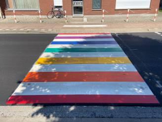 Zes nieuwe regenboogzebrapaden kleuren schoolomgevingen, Assenedesteenweg krijgt 3D-zebrapad