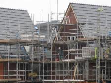 Woningbouw in Schuytgraaf houdt rekening met bijen en dwergvleermuizen