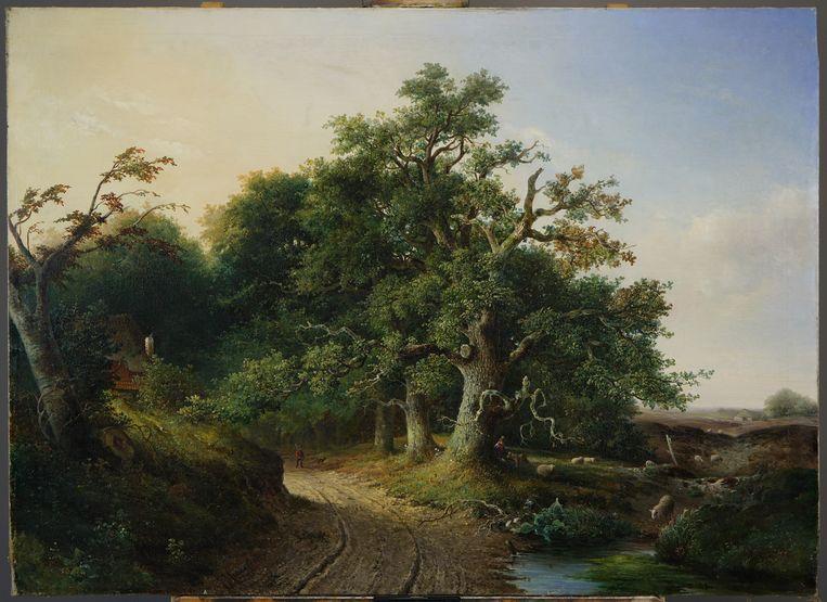 De wodanseiken op een schilderij van Jacob Cremer, een landschapsschilder uit de 19de eeuw Beeld Collectie Museum Arnhem - Fotografie Han Boersma