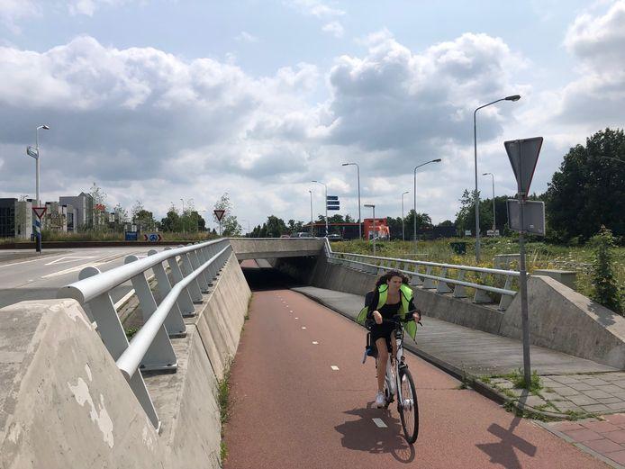 Het tunneltje bij Ben van Dijk is nu nog redelijk maagdelijk. Vanaf dit najaar mogen graffitikunstenaars zich hier legaal  uitleven.