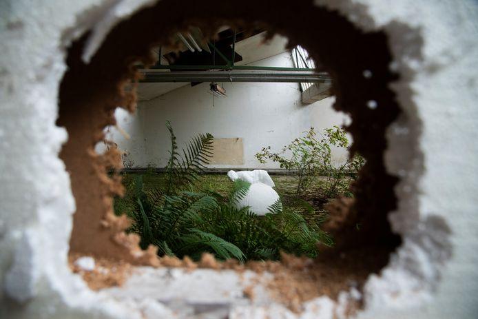 Kunstenaars maken handig gebruik van de omgeving om hun kunst te etaleren.