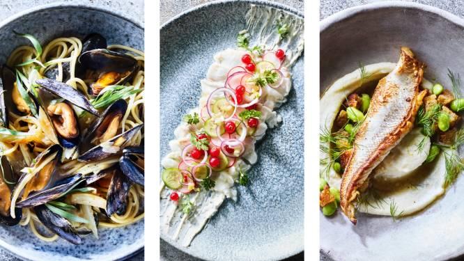Koken met mosselen en ander lekkers uit de Noordzee: 5 frisse visgerechten van foodie Elise Van de Poele