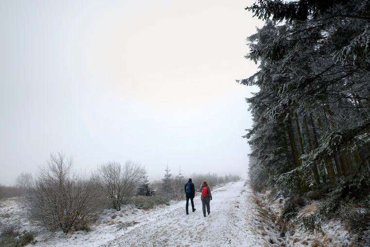 Wandelaars op de besneeuwde Hoge Venen  (archieffoto 8 februari 2021). Beeld Photo News