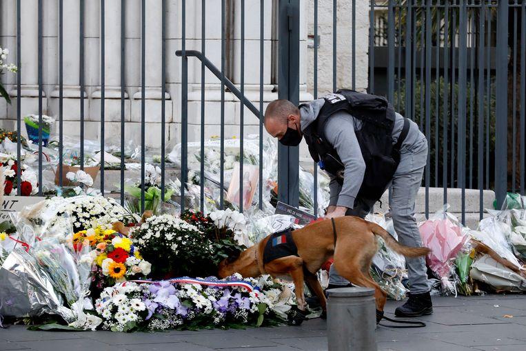 Een agent met politiehond snuffelt bij de bloemenzee aan de kerk.  Beeld EPA