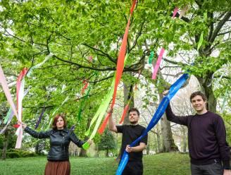 """Astridpark heeft Troostboom met 144 gekleurde linten: """"Iedereen kan de boom een kaartje sturen"""""""