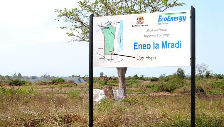Aankondiging van EcoEnergy van haar suikerrietplantage in Tanzania. Beeld null