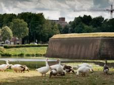 Het is definitief: Vuelta start op Citadel Den Bosch