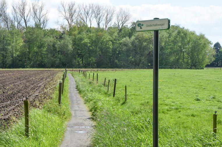 De Godschalkwegel, tussen de Olmenstraat en Iepenstraat, is vandaag de enige trage weg doorheen het groene gebied.