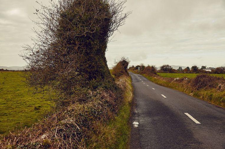 The Burren. Beeld Oof Verschuren